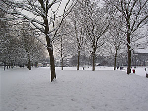 Picture of Snowy brighton - December 2010